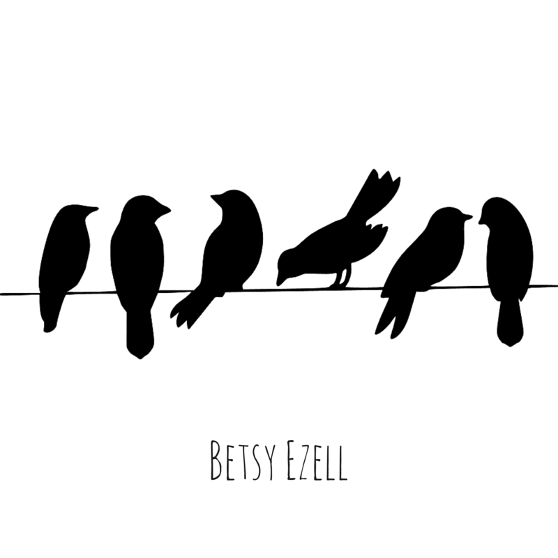Bird on a Wire Cover